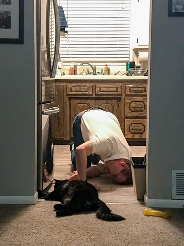 man and cat work together to retrieve toy under refridgerator