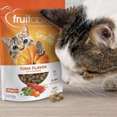tuna pumpkin cat treats
