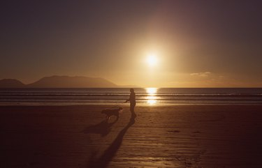 Silhouette of a person and a dog on inch beach, co. Kerry, Ireland