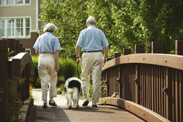 Couple walking dog on bridge