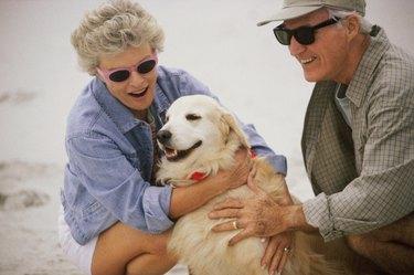 Senior couple sitting on the beach with a dog