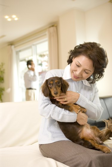 A Senior Adult Woman Holding a Dog in a Living Room, Front View, Side View, Differential Focus