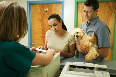 Couple with dog at front desk of vet clinic