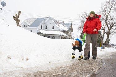 Woman walking dog in booties in winter