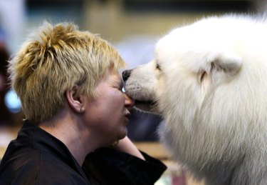 Dogs And Owners Gather For 2013 Crufts Dog Show