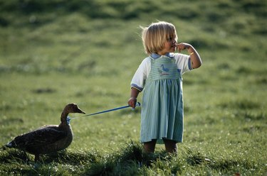 Girl (2-3) standing with plastic duck in garden