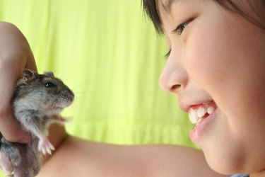 Girl & hamster