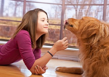 Young Girl Feeds Her Dog Peanut Butter