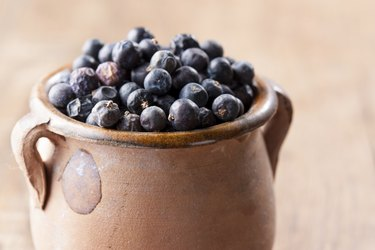 Pile of juniper berries on ceramic bowl