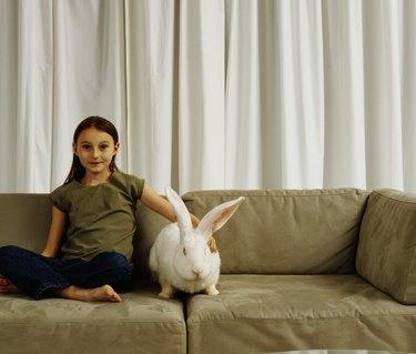 Girl (7-9) on sofa with white rabbit, portrait