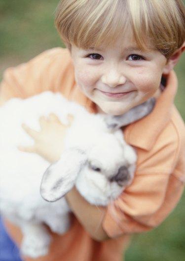 Boy (4-5) holding pet rabbit, portrait