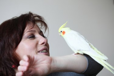 parrot and woman