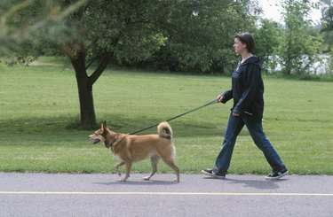 Woman walking her pet dog