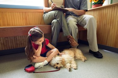 Family with sick dog sitting in veterinary clinic waiting room