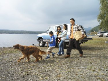 Family of four and dog on shore by car, father carrying hamper