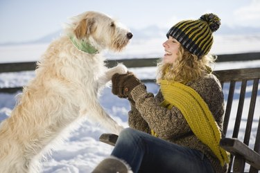 Woman playing with pet dog in snow