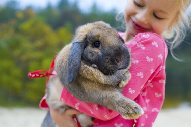 Portrait of beautiful girl with rabbit