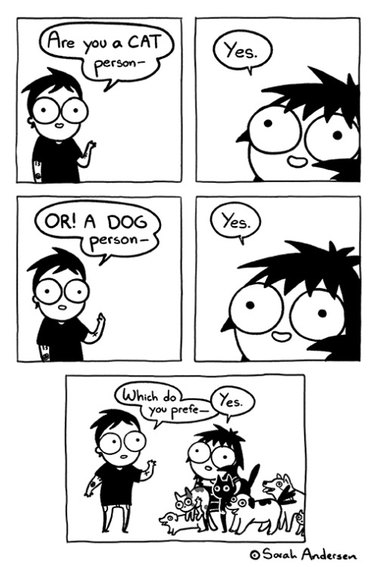 Are you a cat person or dog person comic