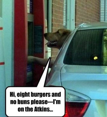 Golden retriever sticking its head out of car window at drive-thru.