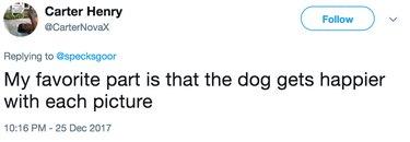 dog gets happier tweet