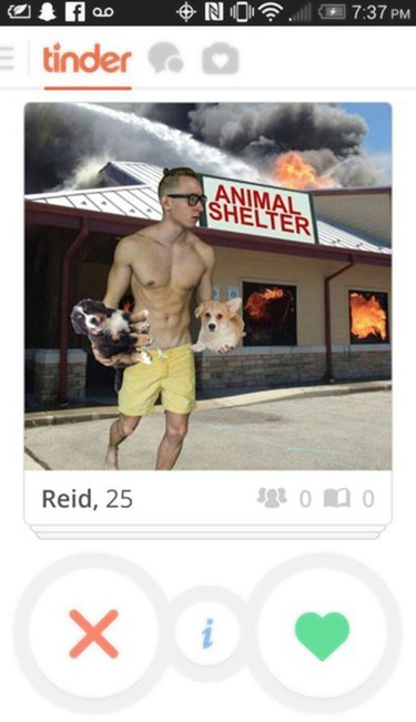 Shirtless man rescues dogs from burning animal shelter in Tinder profile picture