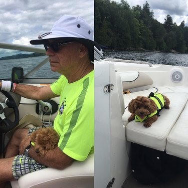 Man in neon green t-shirt steers boat while holding small dog in neon green life vest