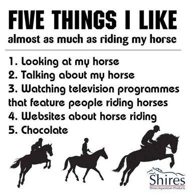 List of horse stuff.