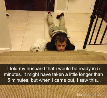 Dog and man waiting at the bottom of a staircase.