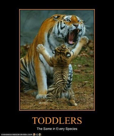 Animals who are OVER parenting