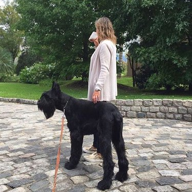 Woman with large dog