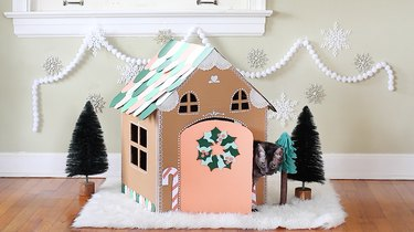 Cat peeking out of gingerbread house