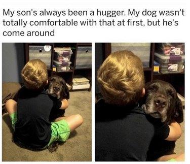 Dog and little boy hugging