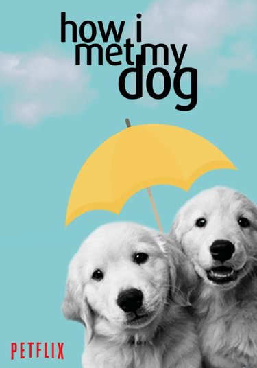 Graphic designer recreates posters for popular TV shows with dogs