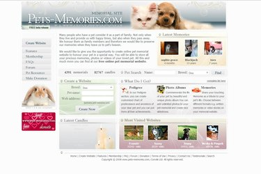 website about a beloved pet