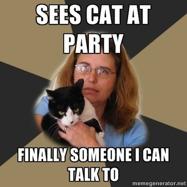 """Cat meme """"sees cat at party, finally someone I can talk to"""""""
