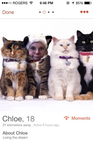 Woman's Tinder picture faceswapped with a cat