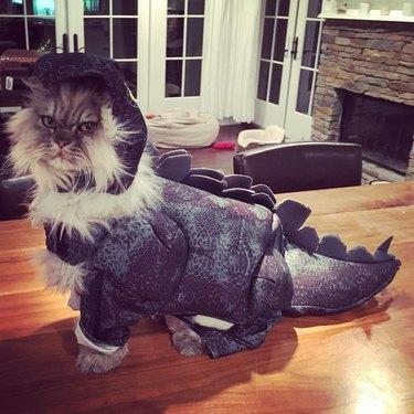 Kate Beckinsale's Cat Is the Cutest, Most Ferocious Dinosaur