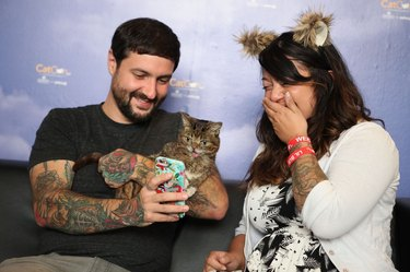 Lil Bub and Mike Bridavsky snap selfie with shocked woman at CatCon