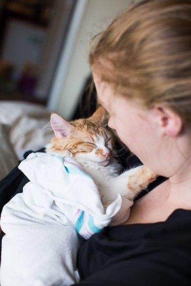Couple pranks internet with maternity shoot for new kitten