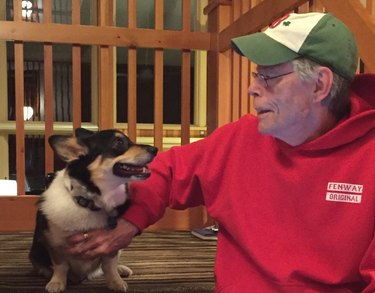 Stephen King's Corgi May Be The Most Evil Thing You'll Ever Snuggle