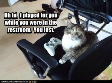 Cat sitting next to gaming controller.