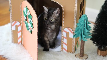 Cat sitting inside gingerbread house