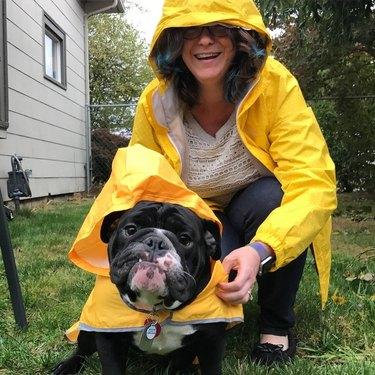 Woman and bulldog in yellow rain coats