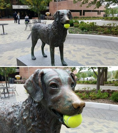 Statue of dog with tennis ball in its mouth.