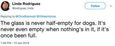 dog philosophy tweet