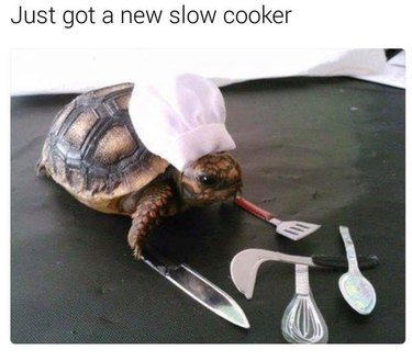 Turtle with chef's hat and cooking utensils.
