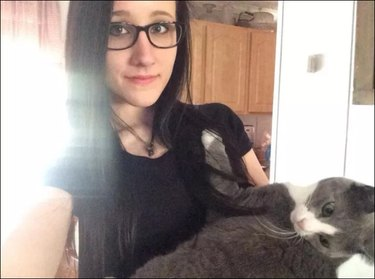 Jealous cat puts bossy kitten in place with epic photobomb