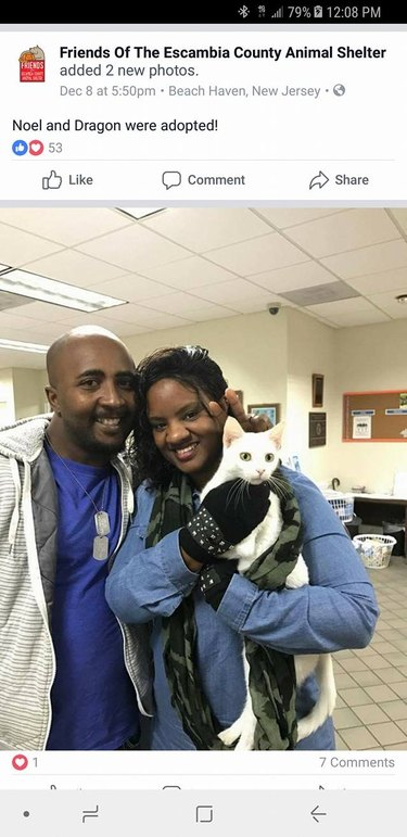 other family with white cat