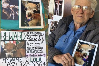 Pilfered Pooch Reunited With 93-Year-Old Veteran
