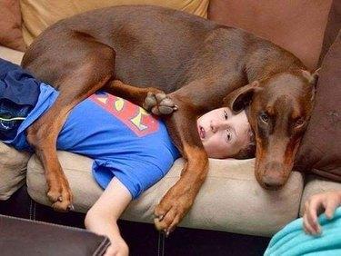 dog on top of teen boy